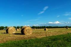 Сено свертывает в итальянской сельской местности Стоковая Фотография