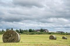 Сено свертывает в поле в сельской местности Стоковые Фото