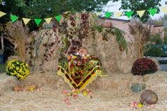 Сено с овощами красиво украшенная зона фото стоковое изображение rf