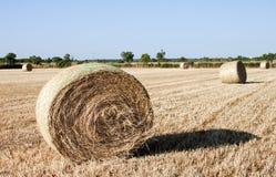 сено формы bales сырцовое Стоковая Фотография RF