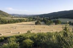 сено хлебоуборки западное Стоковые Изображения RF