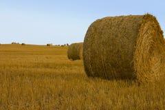 сено 2 bales Стоковая Фотография
