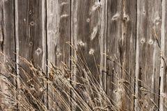 Сено, barnboards, предпосылка Стоковые Изображения