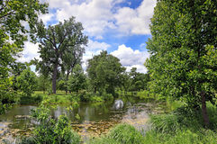 Сент-Луис Forest Park стоковые изображения rf
