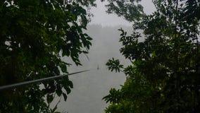 Сень/Zipline в лесе облака Monteverde и Санты Elena, Коста-Рика стоковые фотографии rf