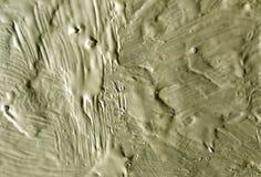 Серая влажная текстура краски Стоковые Изображения RF
