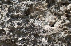 Серая естественная каменная предпосылка фото текстуры каменная текстура вулканическая утесистое взморье Стоковые Изображения RF