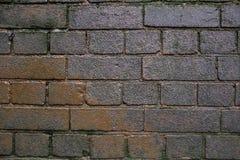 Серая и коричневая текстура предпосылки кирпичной стены grunge Стоковые Фото