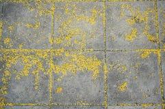 Серая каменная мостоваая с желтой текстурой Стоковые Изображения