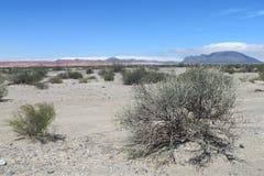 Серая каменная пустыня Стоковые Изображения