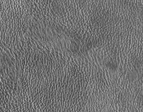 серая кожаная текстура Стоковые Фото