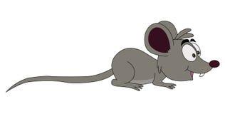 серая мышь Стоковые Фото