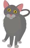 Серая домашняя кошка шаржа, при желтые глаза изолированные на белизне Иллюстрация штока