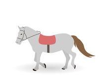 Серая лошадь на белой предпосылке также вектор иллюстрации притяжки corel Стоковое Фото