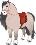 Серая лошадь с седловиной Стоковые Фото