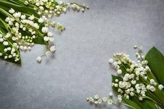 Серая предпосылка с цветками ландышем и космосом экземпляра Стоковые Фотографии RF
