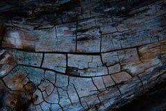 Серая расшива дерева Стоковая Фотография RF