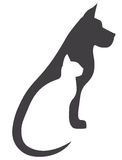 Серая собака и белый кот Стоковая Фотография