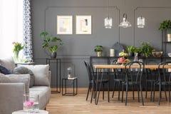 Серая софа около черных стульев на таблице под лампами в открытом пространстве i стоковое изображение