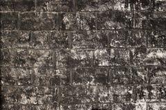 серая стена Стоковая Фотография RF