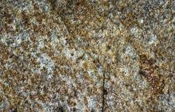 Серая текстура гранита с backround блоков Стоковые Фотографии RF