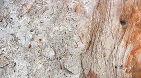 Серая текстура гранита с backround блоков Стоковая Фотография