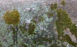 Серая текстура гранита с backround блоков Стоковая Фотография RF