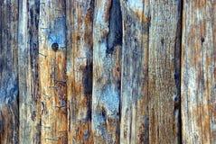 Серая текстура старых деревянных доск сельской загородки Стоковые Изображения RF