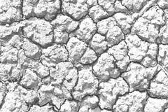Серая треснутая почва Стоковое фото RF