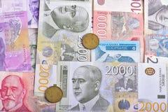 Сербские банкноты RSD Стоковые Фото