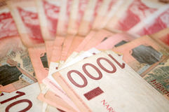 Сербские деньги динара, банкноты 1.000 динаров Стоковые Изображения RF