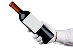 Сервер держа бутылку вина стоковые фотографии rf