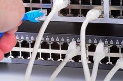 Сервер и провода стоковые фотографии rf