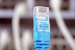 Сервер и провода стоковое фото rf