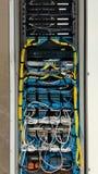 Сервер пользы кабеля LAN Стоковое Фото