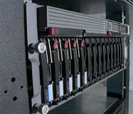 сервер сети Стоковое Изображение RF