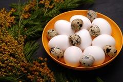 Сервировка стола пасхи с белыми яичками с изображением селективного фокуса цветка мимозы пасха счастливая Стоковое Фото
