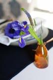 Сервировка стола с голубыми ветреницами Стоковое фото RF
