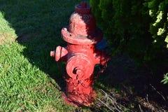 Сердечный красный жидкостный огнетушитель с откалывать краску стоковые фото