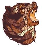 Сердитая голова медведя в коричневых цветах Стоковое фото RF