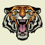 Сердитая голова тигра иллюстрация штока