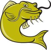 сердитые рыбы сома шаржа иллюстрация вектора