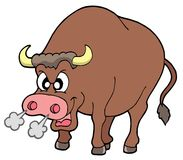 сердитый бык Стоковое фото RF