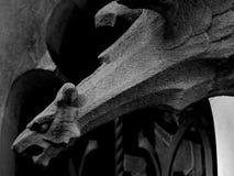 Сердитый орел готовый для того чтобы пойти Стоковое Фото