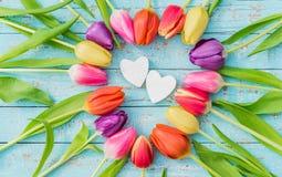 2 сердца влюбленности обрамленного от пестротканых тюльпанов цветут для день ` s Wedding или валентинки Стоковая Фотография RF