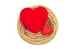 Сердца в nest-4 Стоковая Фотография RF
