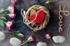2 сердца прыгнутого совместно на гнезде Стоковые Изображения RF