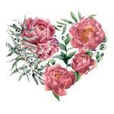 Сердце акварели флористическое с пионом и евкалиптом Вручите покрашенный букет с ветвью евкалипта и листьями, цветками Стоковое Фото