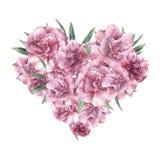 Сердце акварели флористическое с цветками олеандра Вручите покрашенный букет при листья и цветки изолированные на белой предпосыл Стоковое Фото