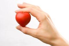 Сердце в женской руке стоковое фото rf
